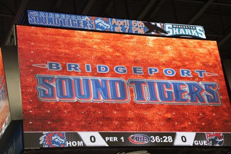Sound Tigers Adventure!