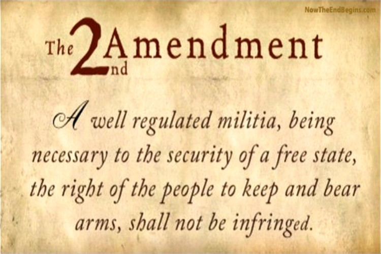 Opinion%3A+%22The+Right+of+the+People+to+Keep+and+Bear+Arms%2C+Shall+Not+be+Infringed%22-+Gun+Control