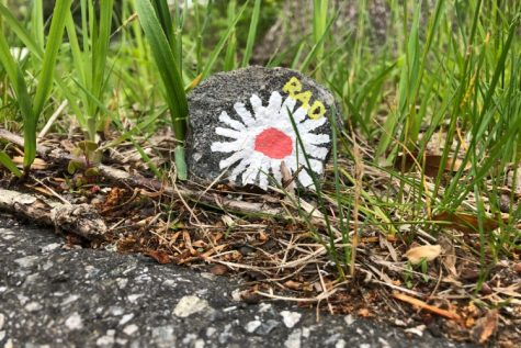 Rock Painting With Maddie and Rachael